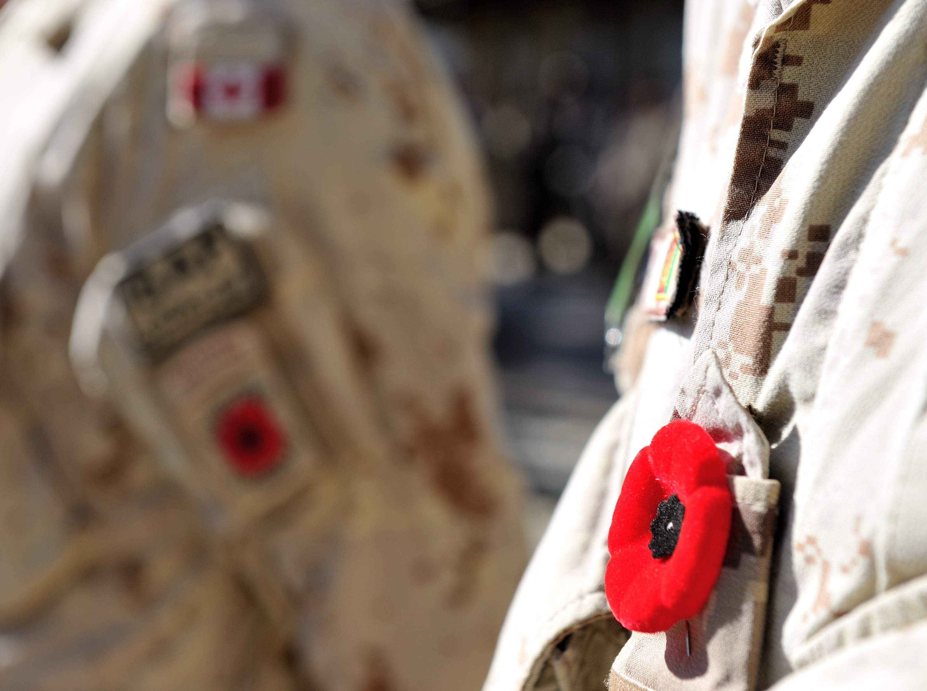 A poppy is pinned on a Canadian Armed Forces soldier's uniform at the final Remembrance Day ceremony held by Canadian soldiers in Afghanistan on November 11, 2013.  Photo: Sgt Norm McLean, Canadian Forces Combat Camera